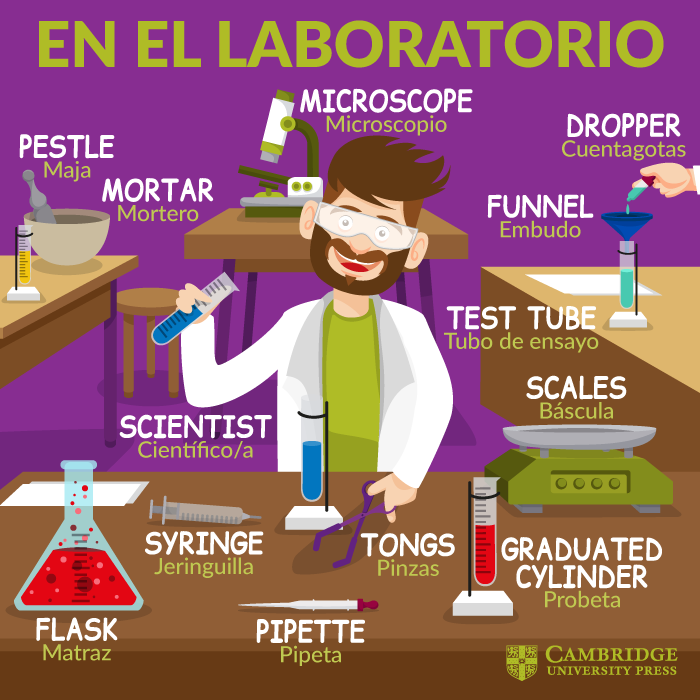 Vocabulario En Inglés En El Laboratorio Blog Cambridge